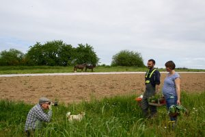 Edmond Boucard photographie Anne-Gaëlle et Yves-Alain, maraîchers avec au loin l'âne et le cheval qui les observent